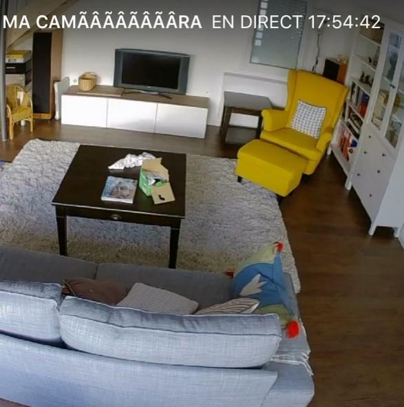 la cam ra d int rieur logi circle de logitech la mite orange. Black Bedroom Furniture Sets. Home Design Ideas